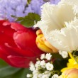 Red and white tulips in bouquet, close-up — Stock Photo #12474727