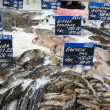 Great variety of fish on market display — Stock Photo #12475928