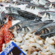 Great variety of fish on market display — Stockfoto #12475932