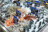 Variety of fish and seafood — Stockfoto