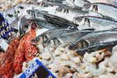 Great variety of fish on market display — Stock Photo