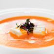 Gaspacho (cold summer soup) in porcelain plate — Stock Photo