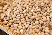Pile of pistachios — Stock Photo