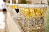 Rows of champagne flutes — Stock Photo