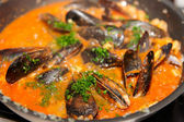 Mussels being fried in pan with tomato sauce and herbs — Stock Photo