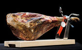 Top quality spanish jamon iberico — Stock Photo