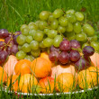 Stock Photo: Pile of fresh fruits in grass