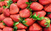 Ripe fresh strawberries — Stock Photo