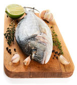 Gilt-head bream with herbs and spices isolated on white — Stock Photo