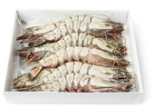 Giant prawns in retail pack, isolated on white — Stock Photo