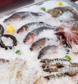 Fish and seafood on market stall — Stock Photo