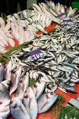 在伊斯坦布尔街头鱼市场 — 图库照片