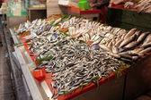 Calle pescadería en Estambul — Foto de Stock