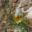 Full glass of Riesling wine on slate rock — Stock Photo #47186027