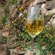 Full glass of Riesling wine on slate rock — Stock Photo #47186033