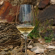 Glass of Riesling wine on slate rock — Stock Photo #47186315