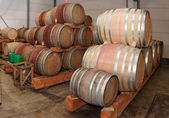 Oak casks with pinot noir (PN) wine — Stock Photo