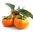 Three fresh persimmons — Stock Photo