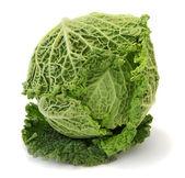 Fresh organic cabbage — Stock Photo