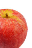 Macro shot of Gala Apple — Stock Photo
