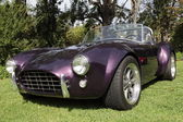 Shelby Cobras at the Los Angeles Arboretum — Stock Photo