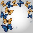Stock vektor: Butterfly Background