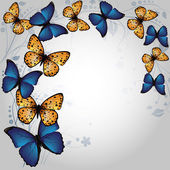 Fond papillon — Vecteur