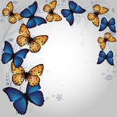 蝶の背景 — ストックベクタ