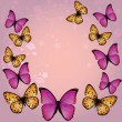 Pink butterfly background — Vector de stock