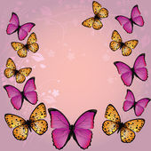 Pink butterfly background — Stock Vector