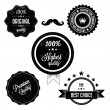 Collection of Premium Quality Retro Vinatge Labels — Stock vektor