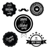 Collection of Premium Quality Retro Vinatge Labels — Stock Vector