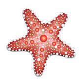 морская звезда — Cтоковый вектор