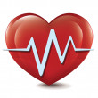 Stock Vector: Heart Cardiogram