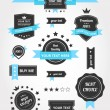 Premium Vector Set of Vintage Retro Labels — Vettoriali Stock