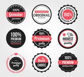 Set di etichette e distintivi vintage retrò — Vettoriale Stock