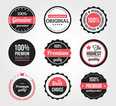 Set of Retro Vintage Badges and Labels — Vettoriale Stock