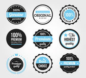 Set of Retro Vintage Badges and Labels Black Blue — ストックベクタ