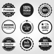 Cтоковый вектор: Retro Vintage Badges and Labels