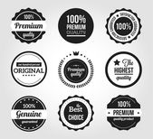 Retro vintage badges en etiketten — Stockvector