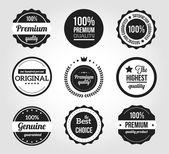Retro vintage abzeichen und etiketten — Stockvektor