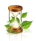 Hourglass And Plants — Stock Vector