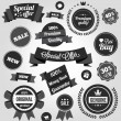 Wektor stockowy : Black and White Vector Stickers Labels and Badges Set