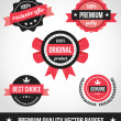 Premium Quality Vector Badges — Stockvektor