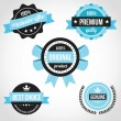 Premium Quality Vector Badges Blue — Stock Vector