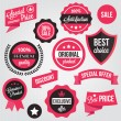 Vector Badges Stickers and Labels Set — Stock Vector