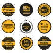 Vector Retro Vintage Badges and Labels Yellow — Stock Vector