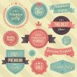 Vector Vintage Badges and Ribbons Set — Stock vektor
