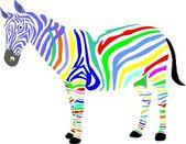 Zebra, africa, savanna, color, animal, — Stock Photo