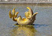 Golden fish fountain — Stock Photo